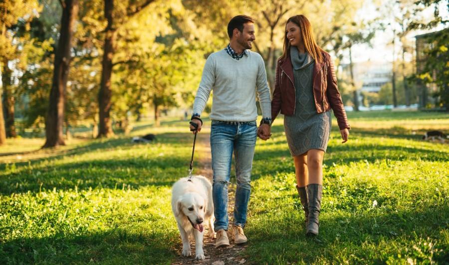 Mersul pe jos face piciorul frumos! 22 septembrie - Ziua mondială fără maşini
