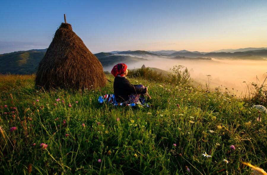 Ziua artei fotografice în România, marcată în fiecare an în data de 11 ianuarie