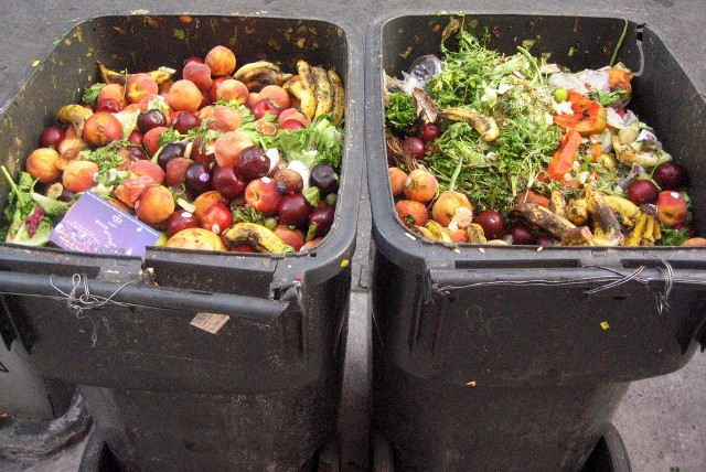 Aproape un miliard de tone de alimente au fost aruncate în 2019 - raport ONU